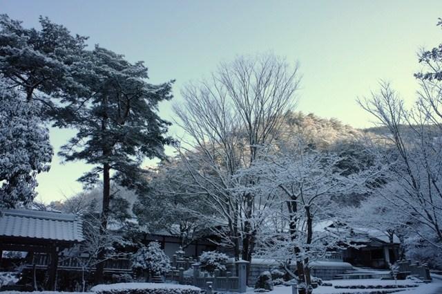 201302yukikesiki.jpg